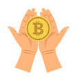 hands holding bitcoin vector image