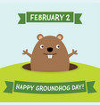happy groundhog day greeting card vector image