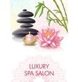 Spa Salon Poster vector image vector image