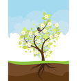 Stylized Spring Tree vector image vector image