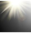 Yellow orange warm light effect EPS 10 vector image