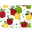 apple colorful seamless pattern on white vector image