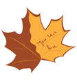 autumnal banner vector image vector image