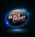 black friday sale oval banner vector image vector image