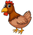 brown chicken on white background vector image vector image