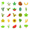 cactus icons set cartoon style vector image
