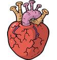 Cartoon doodle heart vector image