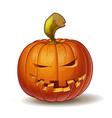 Pumpkins Mean 2 vector image vector image