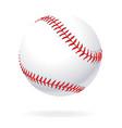 realistic baseball vector image vector image
