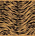 realistic orange safari pattern background tiger vector image vector image
