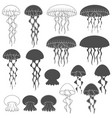 set of black and white images with jellyfish vector image vector image