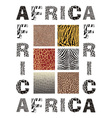 Africa background with text and texture wild vector image