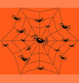 black spider and spider web on thinly spider web vector image