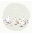 cute pigeons set vector image vector image