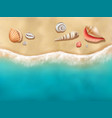 seaside top view sun beach with seashells on sand vector image vector image