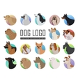 set dog logos in flat style design vector image