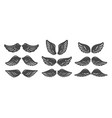 set wings isolated on white background vector image