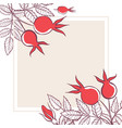 square frame with flowers leaves and rosehip vector image vector image