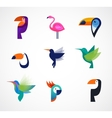 tropical birds - set icons vector image vector image