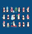 winter penguins cute wild bacharacters north vector image vector image