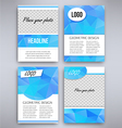 Big set of aqua triangular design flyer template vector image vector image
