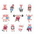 cartoon cute funny pigs in human life vector image