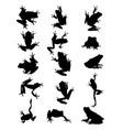 frog animal silhouette vector image