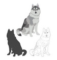 husky dog in three different styles vector image