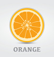 Orange Slice Logo Design vector image