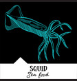 squid for a seafood menu vector image