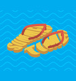 summer time slippers lettering beach shoes vector image