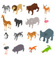 wild animals isometric vector image