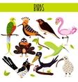 Set of Cute cartoon Animals birds living in vector image