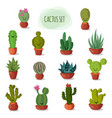 funny and cute cartoon desert cactus in pots vector image