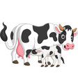 cartoon mother cow feeding bacalf vector image vector image