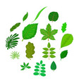 green leafs icons set cartoon style vector image vector image