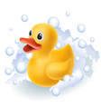 Rubber duck in foam vector image vector image