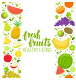 seamless fruits vertical border vector image vector image