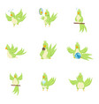 set cute adorable green parrot in different vector image vector image