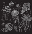 set with jellyfishes in ethnic boho style vector image