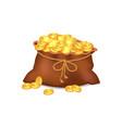 treasure coins in brown bag vector image