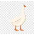 white goose icon cartoon style vector image vector image