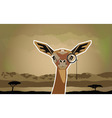 Funny African animal Antelope vector image