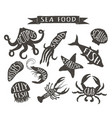 vintage silhouettes of sea animals with names vector image