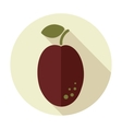 Plum flat icon with long shadow vector image