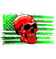 america flag painted vector image vector image