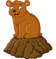 cartoon happy brown bear vector image