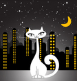 city cat vector image vector image