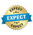 expect 3d gold badge with blue ribbon vector image vector image