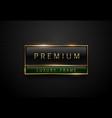 premium black green label with golden frame on vector image